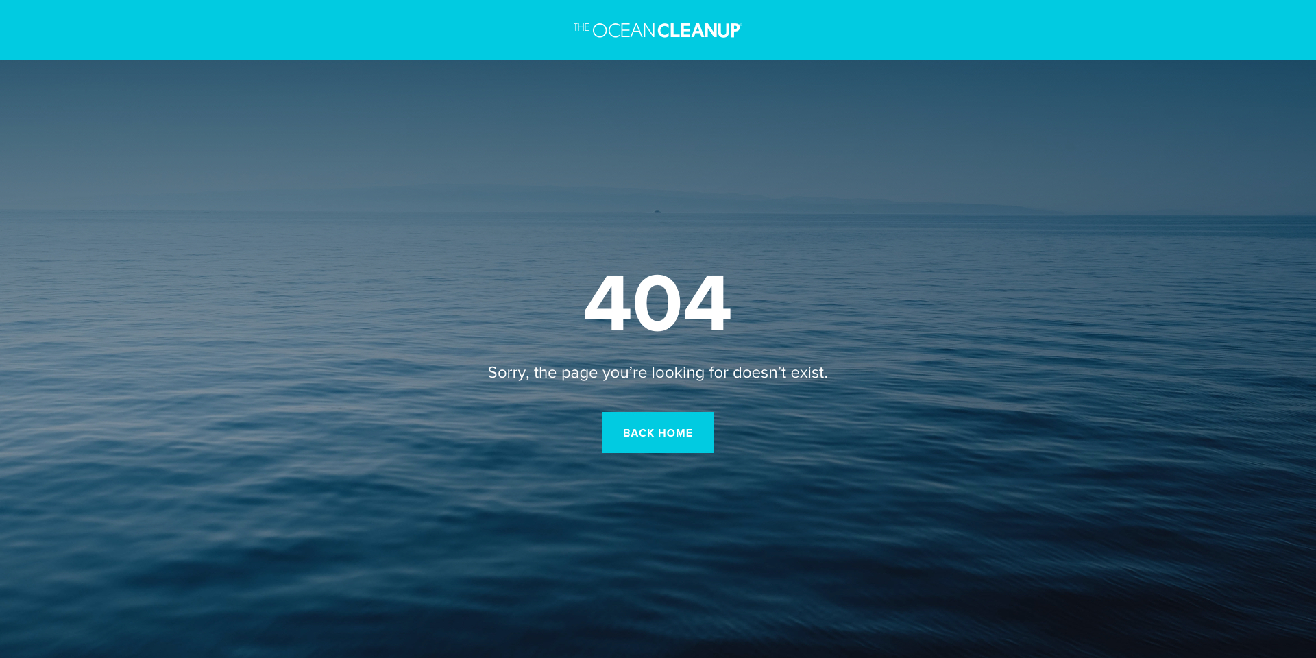 The Ocean Cleanup site inner page